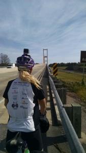 Bridge to Baton Rouge - Audubon Bridge